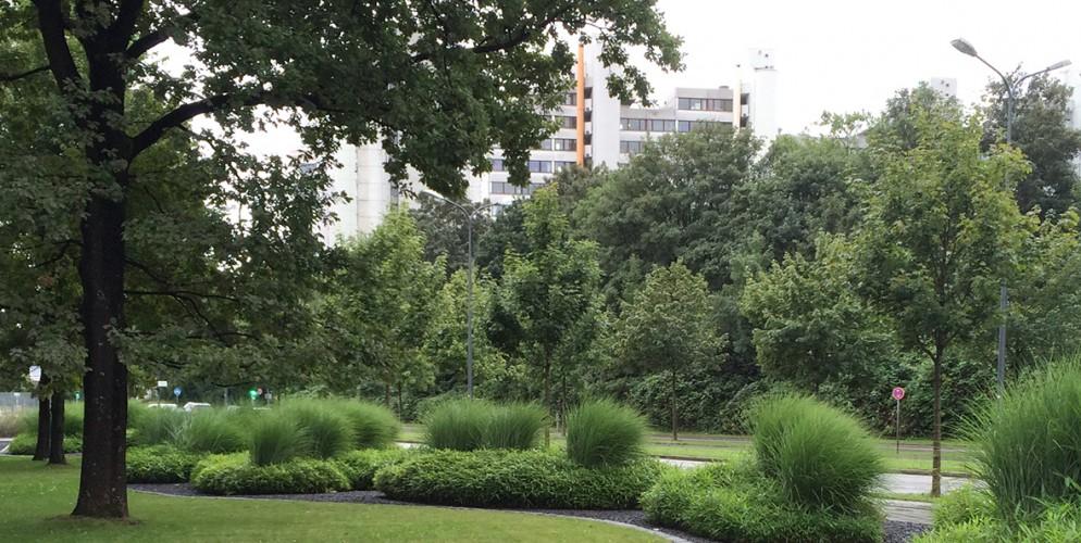 Die organischen Pflanzinseln wurden mit Bambus und Ziergräsern bepflanzt
