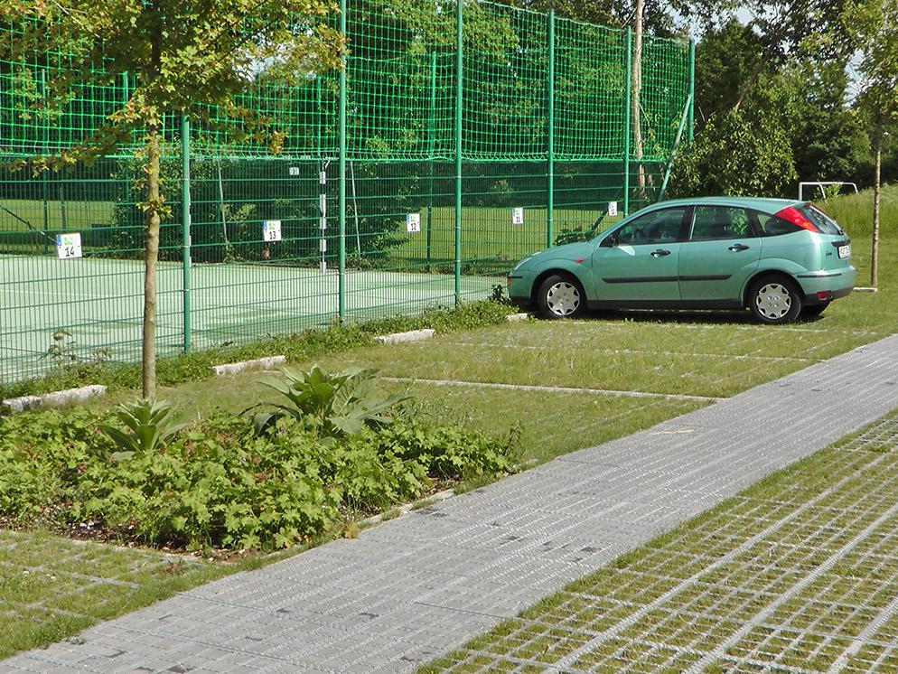 Albertinum Parkplatzanlage, Baumschutz